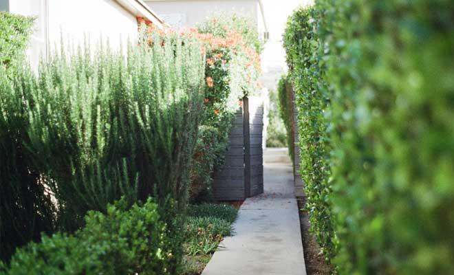 Wir bauen Wege für Ihre Gartengestaltung