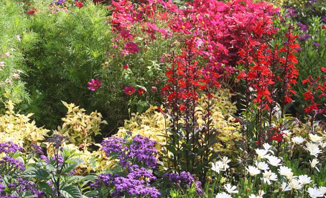 Wir beflanzen Ihren Garten für Sie!