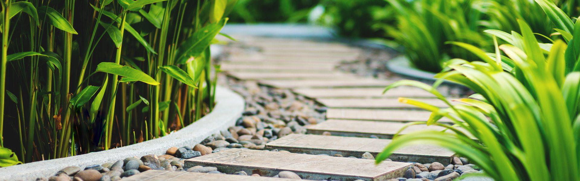 Schlagwort: Pflanzenschutz