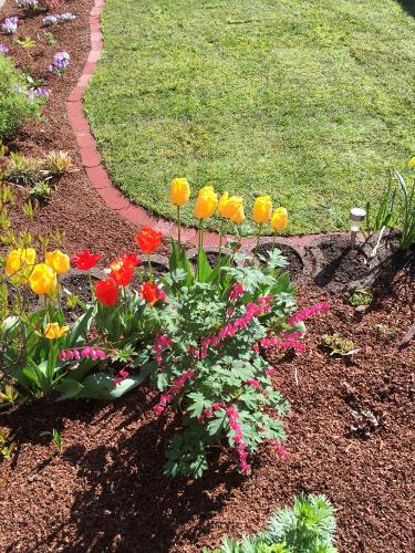 Ein gepflegter Rasen ist ein wichtiger Bestandteil der Gartengestaltung
