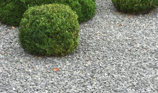 Schottergarten - bequem, aber auch umweltgerecht?