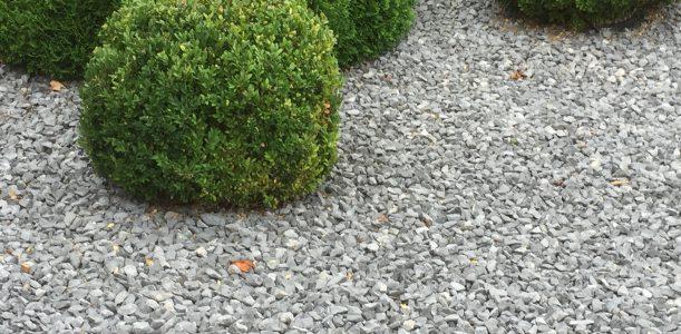 Schottergärten: Zweckmäßigkeit trifft auf Umweltschutz