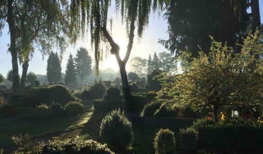 Gartenbau Kathöfer, Solingen: Grabpflegedienste