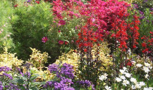 Nachhaltigkeit im Garten